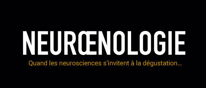 neuroenologie